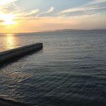 みさき公園裏の釣り場紹介、大阪泉南で大阪近郊の春イカエギングにオススメのアオリイカ産卵場
