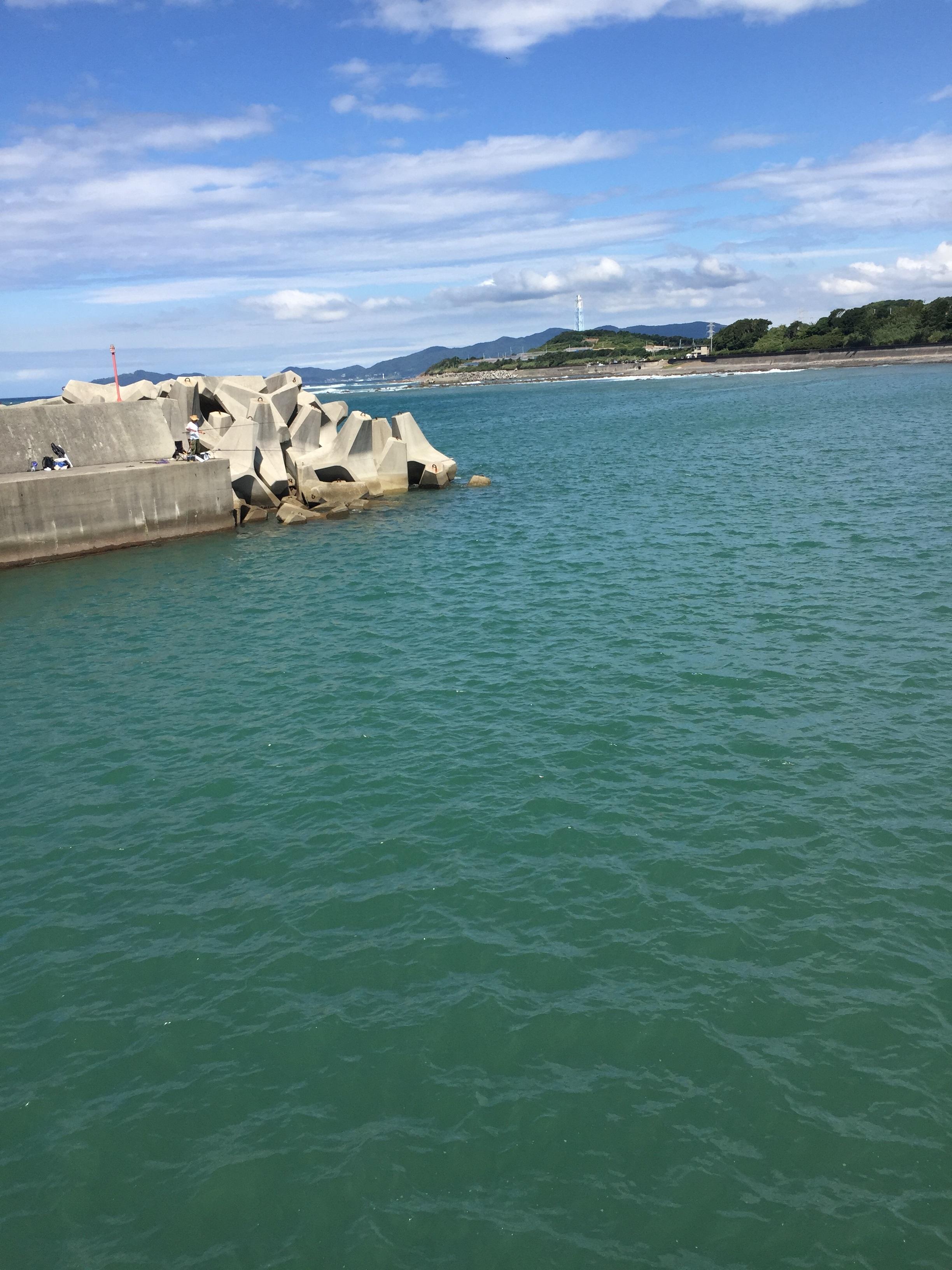 加尾漁港の釣り場紹介、和歌山中紀の春イカ狙いのエギングにオススメの漁港