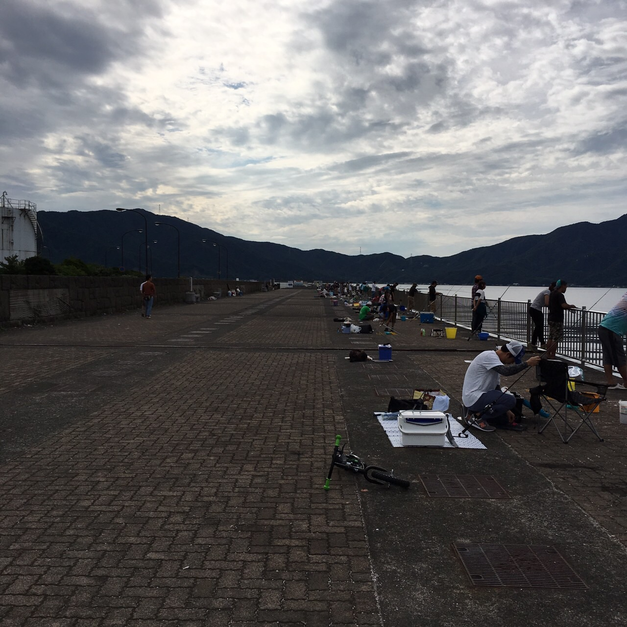 最近の福井敦賀新港のサゴシ他の釣果状況
