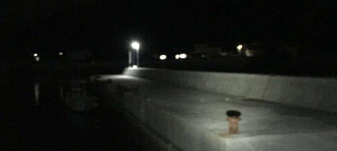 比井漁港で常夜灯ナイトエギング