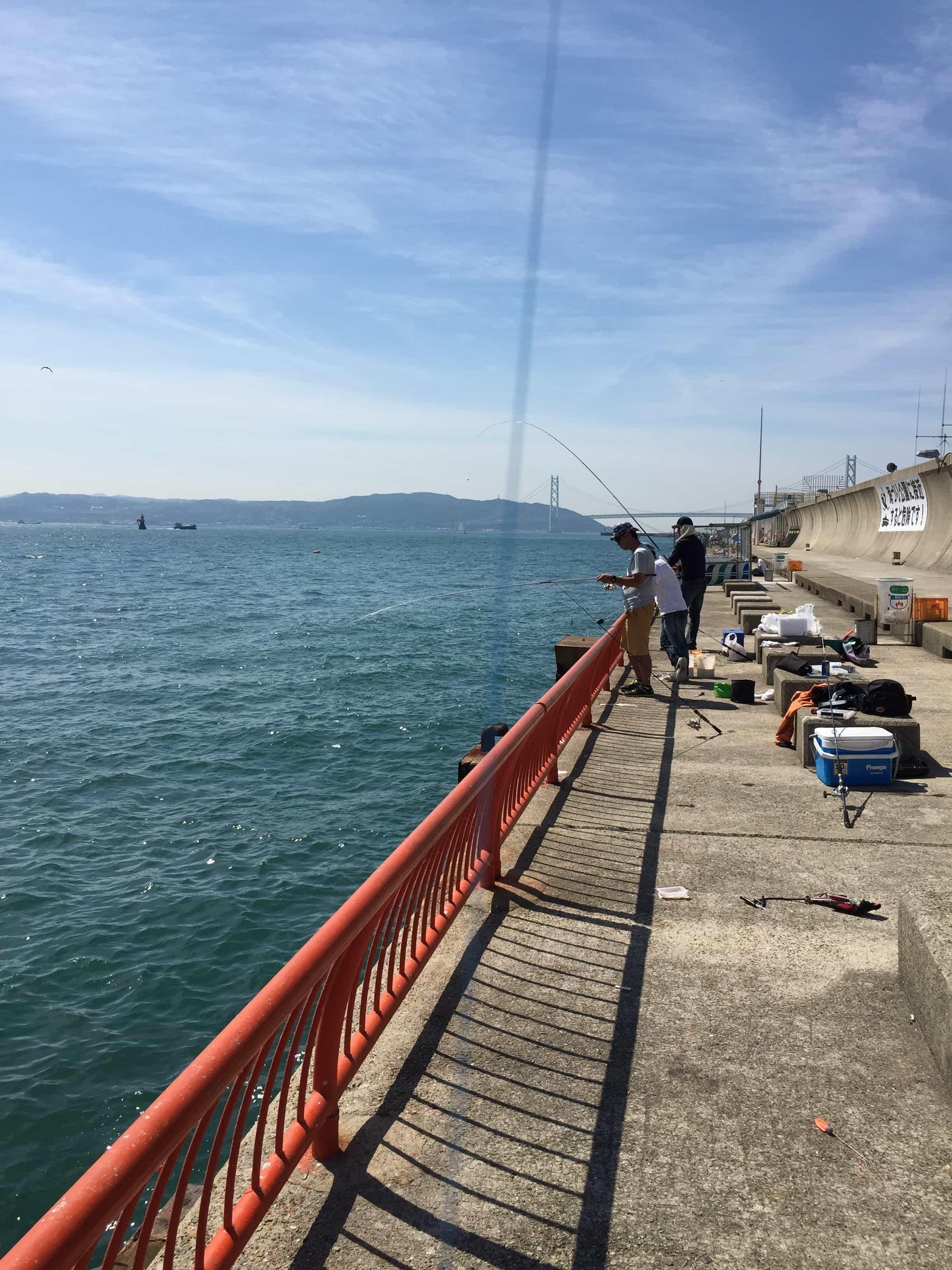 公園 平磯 海 釣り
