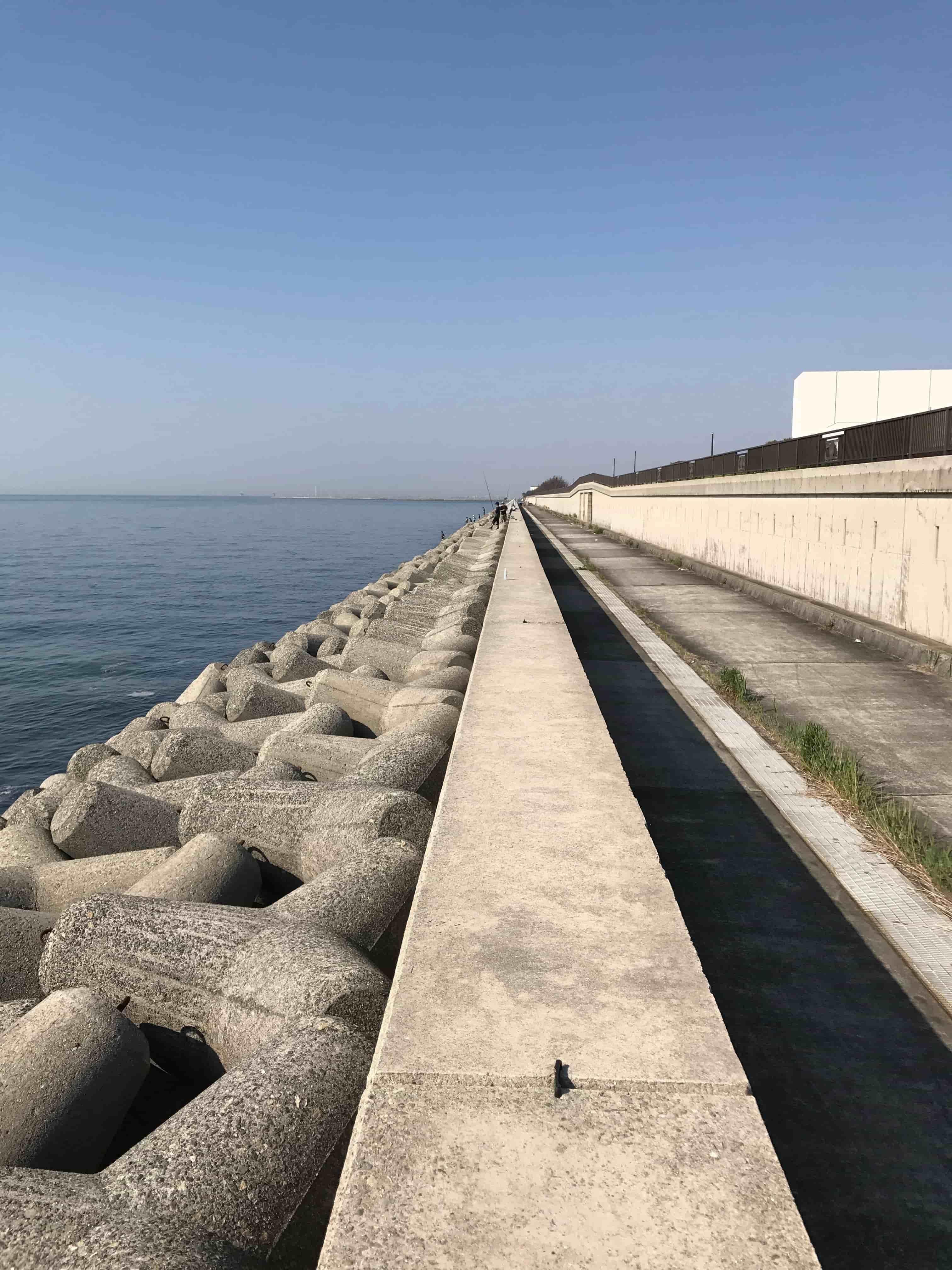 大阪湾ブリ釣果情報につられて貝塚人工島ショアジギング釣行釣果報告(5月)