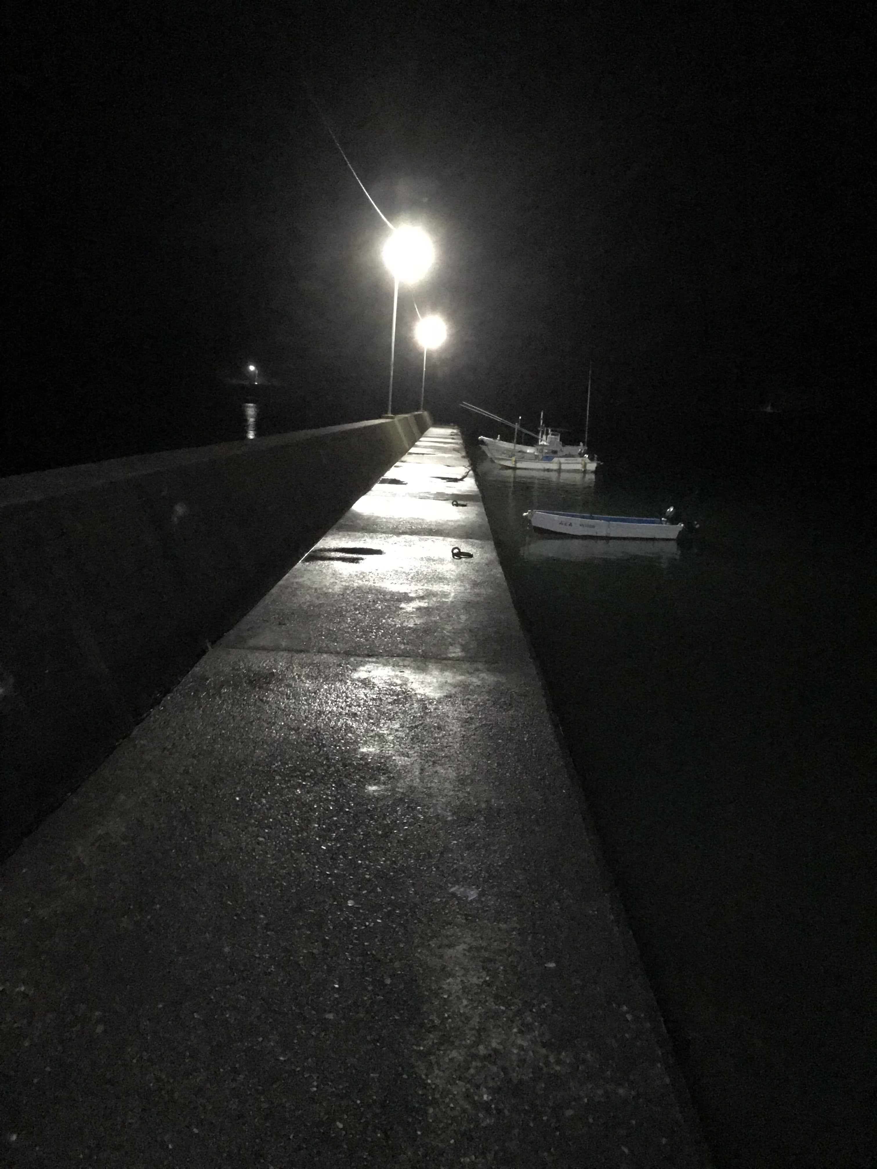 南紀江田漁港の常夜灯はエギングにオススメ