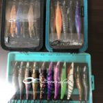 Handy squid jig case