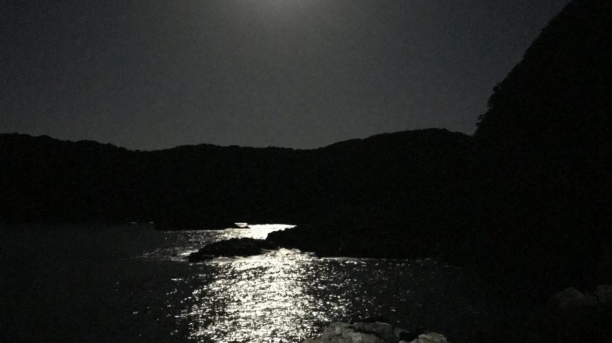 南紀の空いてるポイントで冬のデカイカ狙いのエギング釣行