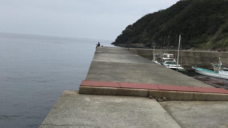 方杭漁港の釣り場紹介、春イカ狙いにオススメの中紀の巨イカ狙いのエギング堤防