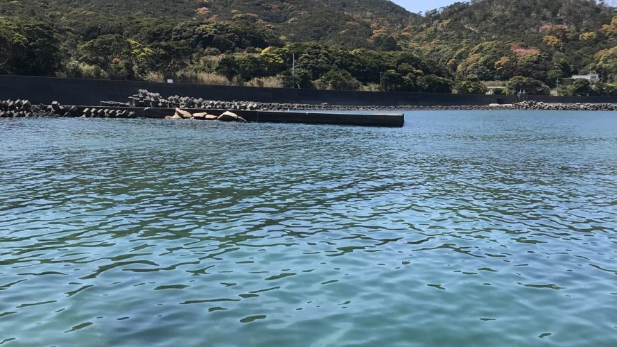 徳島県阿南のエギングオススメポイント、尻杭の堤防の釣り場紹介、穴場春イカや秋イカにオススメのプチ堤防
