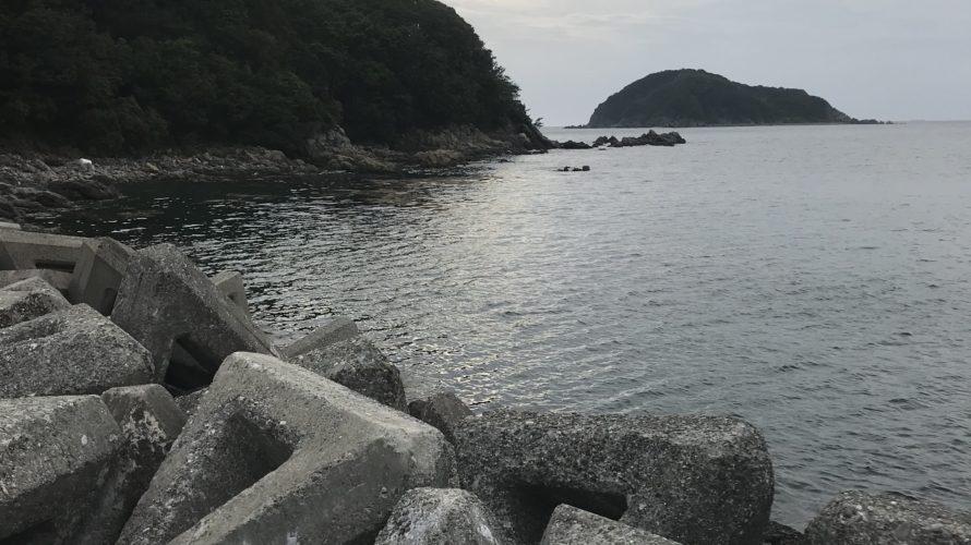 中紀の春イカ秋イカ狙いのエギングにオススメの小杭漁港