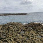 母間港と港裏のリーフの釣り場紹介、鹿児島県徳之島の超巨大クエがいる!!で有名になった足場が良くて釣りがしやすいリーフ