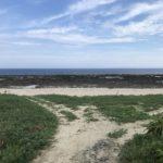 【動画付き】徳之島へ釣り遠征、GTが釣りたいショアキャスティング釣行記day2