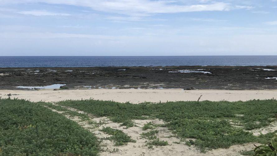 母の島へ釣り遠征、大きいGT・カスミアジが釣りたい徳之島キャスティング釣り遠征釣行day2