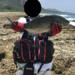 【動画付き】徳之島へ釣り遠征、GTが釣りたいショアキャスティング釣行記day5