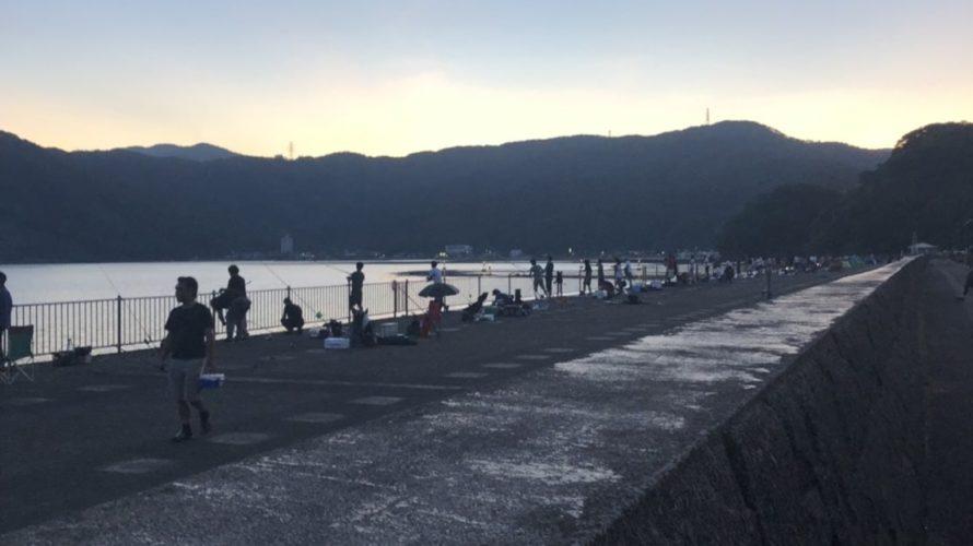 敦賀新港、由良海釣り公園お盆の釣り場込み具合と釣果の情報