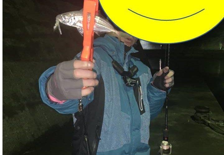 大阪泉南アジング釣行記~イカの釣り方忘れたからアジなら釣れるでしょの釣果と尺アジ情報~