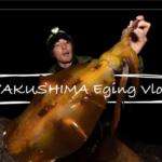 知らないんですか?【やますてぃ】さんの釣り動画!映画調でカッコいいおすすめエギングYOUTUBER