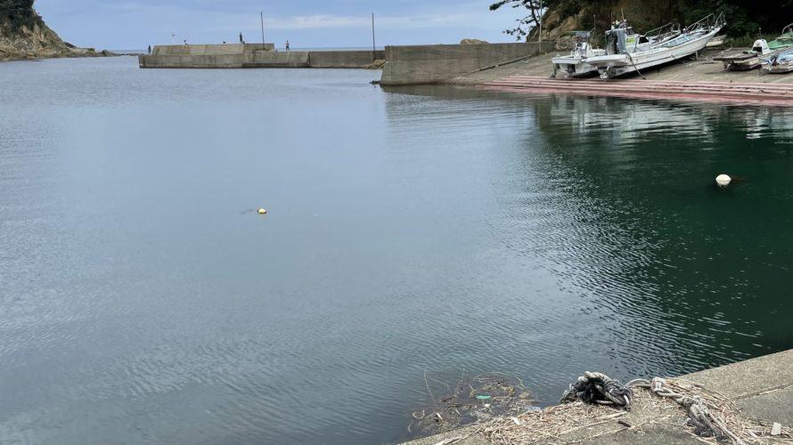 旭漁港の釣り場紹介、京丹後の春イカエギング超オススメポイント