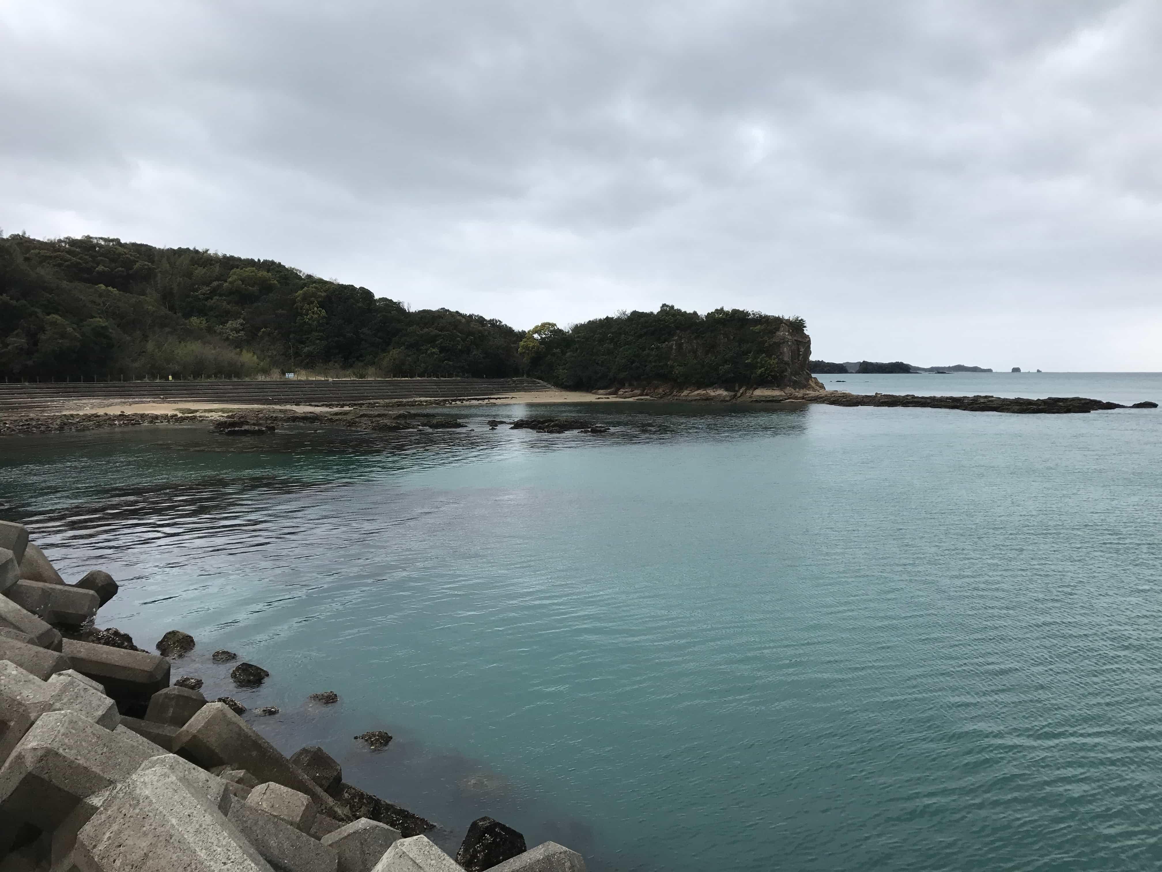 新庄漁港の釣り場紹介、和歌山県田辺市にある干潮だけの春イカ狙い藻場と白浜釣行のお土産釣り場