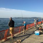 平磯海釣り公園の釣り場紹介(兵庫県神戸市)安全にかつ大物狙いもできる釣り公園