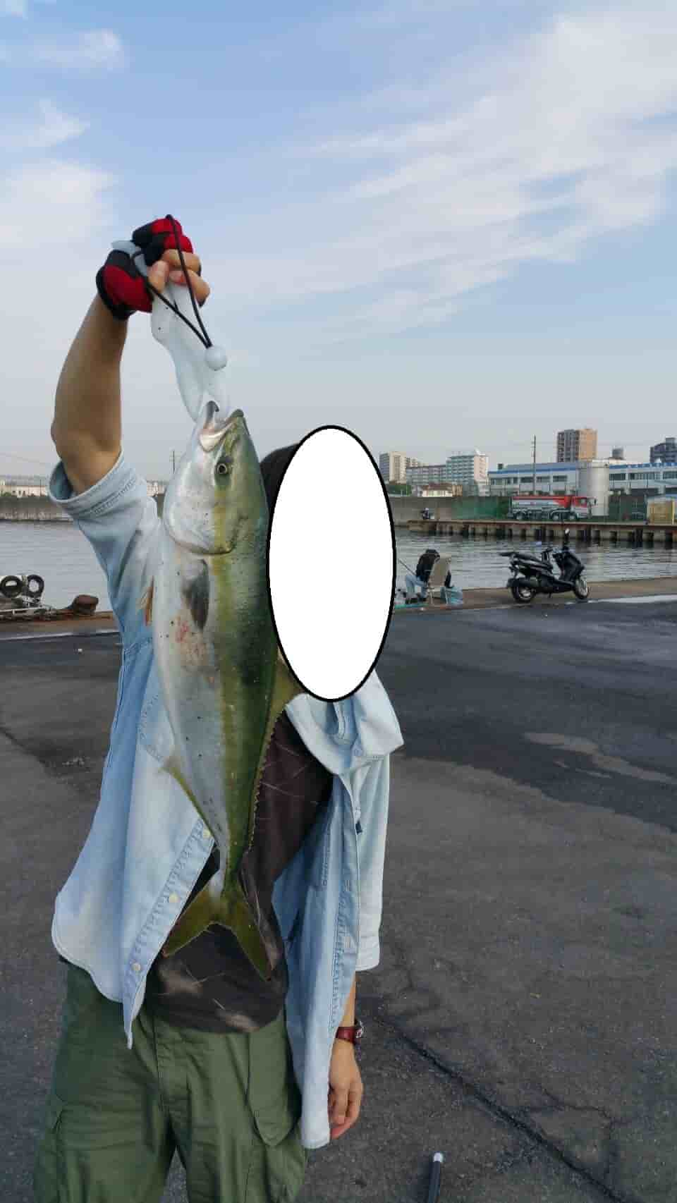 南紀エギングショアジギング釣行と垂水ショアジギングでハマチの釣果情報(平成29年6月4日)