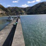 釣姫漁港の釣り場紹介、福井若狭小浜のファミリーフィッシングとエギングにオススメの安全な漁港