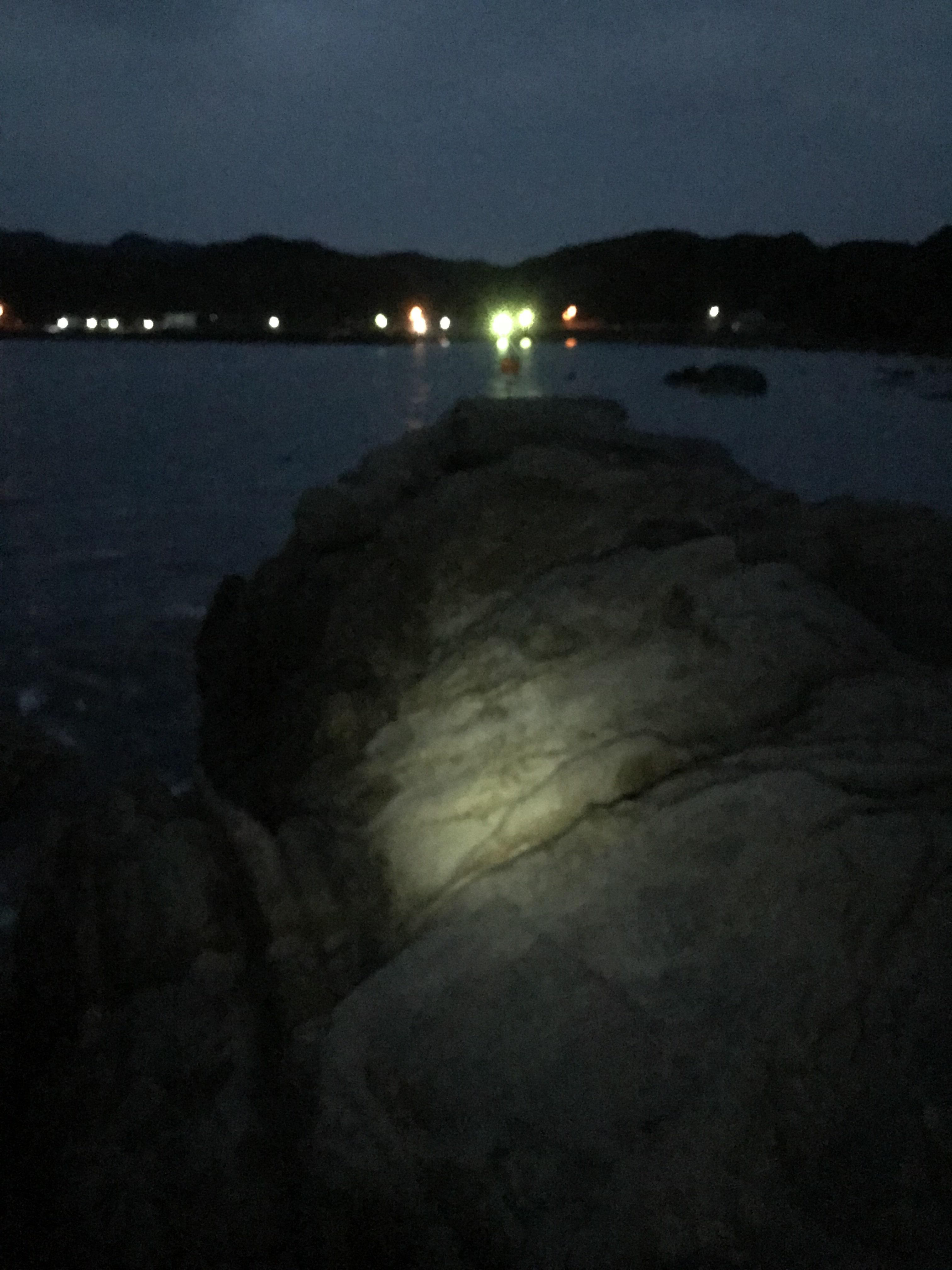 田並地磯コアズエの釣り場紹介(和歌山南紀串本):エギングでオススメの手軽な地磯