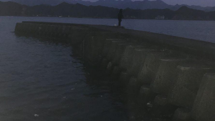 太地くじらの博物館横の釣り場紹介、和歌山県太地のエギングにオススメの手軽な堤防釣り場