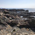 安指マハナの釣り場紹介、和歌山県南紀串本のエギングにオススメのお手軽地磯
