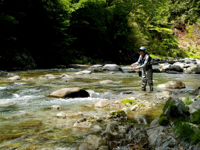 Do you need Fishing license for your fishing in Japan?