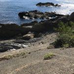 伊古木地磯の釣り場紹介、和歌山県南紀白浜の北風に強い手軽なエギングにオススメの地磯