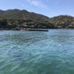 尻杭の堤防の釣り場紹介、徳島県阿南の隠れた春イカや秋イカにオススメのプチ堤防