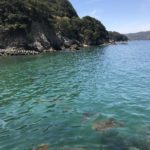 船瀬海岸公園の釣り場紹介、徳島県阿南の春イカや秋イカ狙いのエギングにオススメのプチ堤防