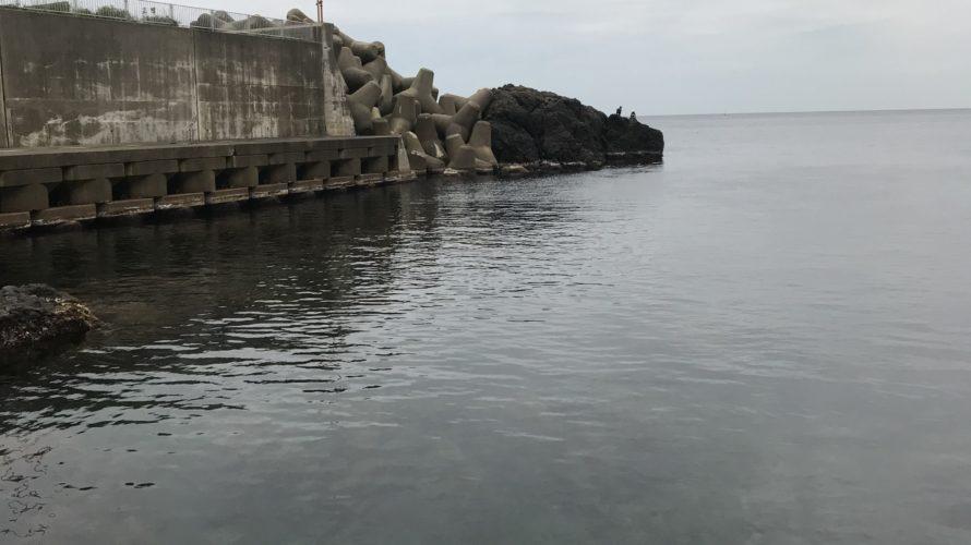 左右漁港の釣り場紹介、福井県越前フカセと秋イカ春イカ狙いのエギングにオススメの漁港