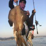 南紀春イカエギングひさびさの2キロアップ釣行記、令和春初アオリイカゲット