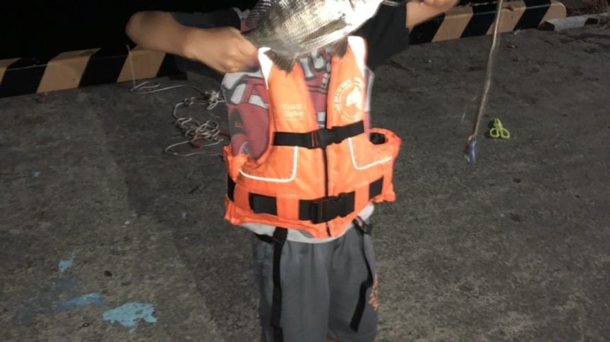 福井若狭湾、サビキでアジやキスの釣果情報(お盆やけど人は少なめ)