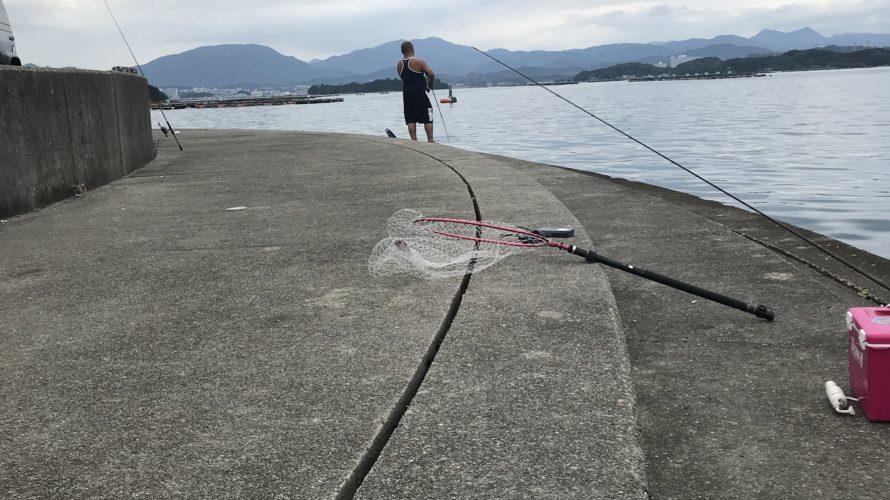 ホテル川久裏の釣り場紹介、白浜の超有名エギングポイントとファミリーフィッシングポイント