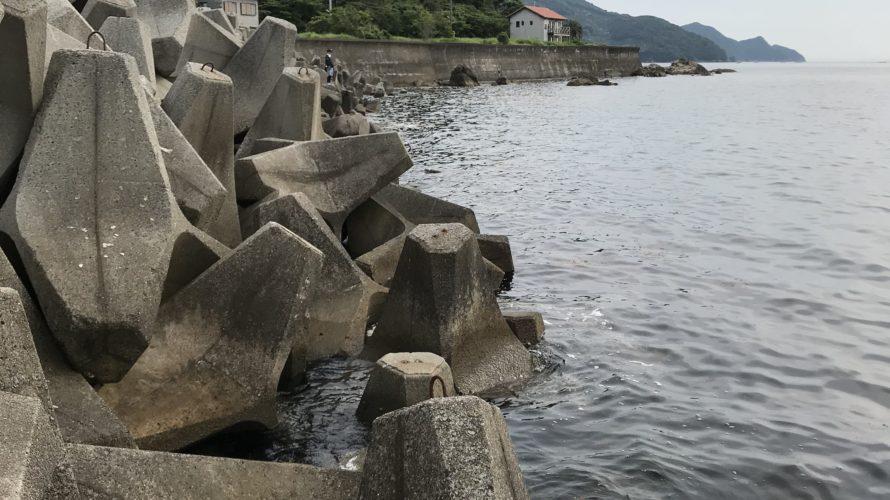 和歌山中紀のエギングポイント唐尾漁港の釣り場紹介(読み方はカロ)