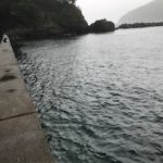 福井小浜のエギングオススメポイント、足場の良い宇久漁港の釣り場紹介