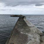 【秋イカ】津井漁港の釣り場紹介、手軽で足場のいい和歌山中紀のエギングポイント